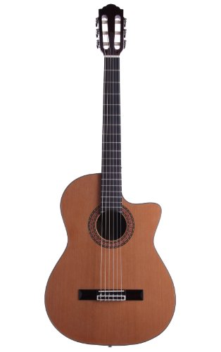 Guild Gn-5 Classical Acoustic-Electric Guitar With Case, Natural