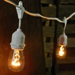 Commercial Edison Drop String Lights, 24 Clear Bulbs, 54 ft White Wire
