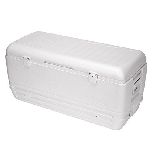 Igloo Quick and Cool Cooler (150-Quart, White) (Cooler Hatch compare prices)