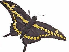 """Swallow Tail Butterfly 18"""" by Fiesta"""