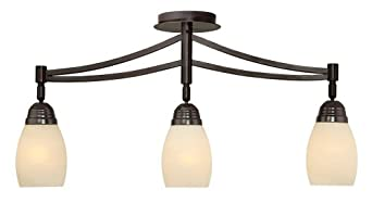 Pro Track Valmont Collection 3 Light Adjustable Fixture Ceiling Pendant Fi