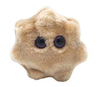 Giant Microbes Rotavirus (Rotavirus) Plush Toy