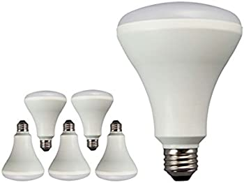6-Pack LED Flood Light Bulb