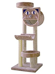 Cat Face 2832 Kitty Gym : Optional Sisal 2 FEET OF SISAL : Parts & Base Color LIGHT BLUE : Poles Color DARK GREEN