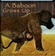 A Baboon Grows Up (Wild Animals) PDF