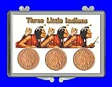"3″ x 2″ Snaplock Coin Holder for ""Three Little Indian Head Cents"" (With Coins)"