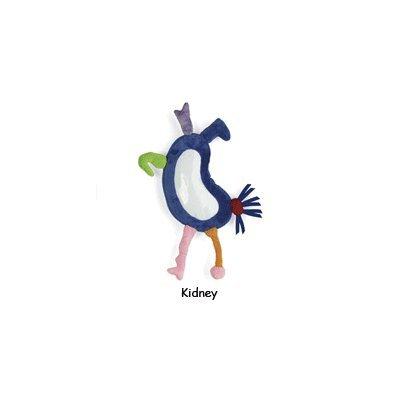 Make Your Own Monster Activity Kit - Kidney