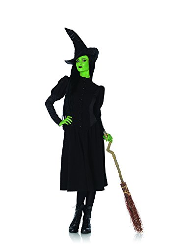 2 PC. Ladies' Wicked Elphaba Dress Set