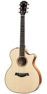 Taylor Guitars 2010 Fall Limited 514CE-LTD Grand Auditorium Acoustic Electric Guitar