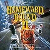 Homeward Bound II:Lost in San Francis