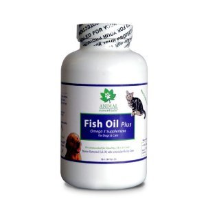 Dog constipation for Does fish oil cause constipation