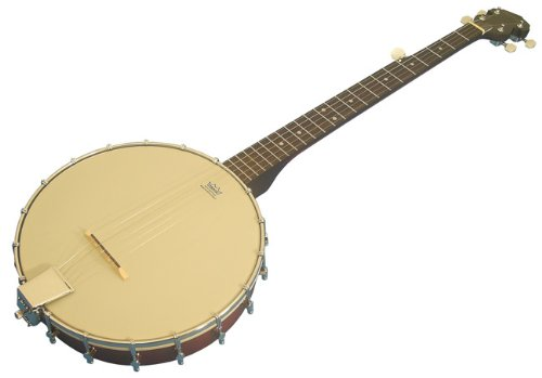 NEW RICHWOOD 5 STRING OPEN BACK BANJO BARGAIN