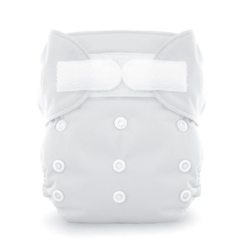 Thirsties Duo All in One Cloth Diaper - 1