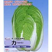 力[白菜]【タネ】小袋