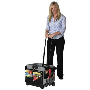 Saddle Bag Organizer for Universal Rolling Cart