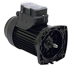 Marathon Electric Impower 3 Speed Round Frame Pool Pump Replacement Motor 1.25Hp