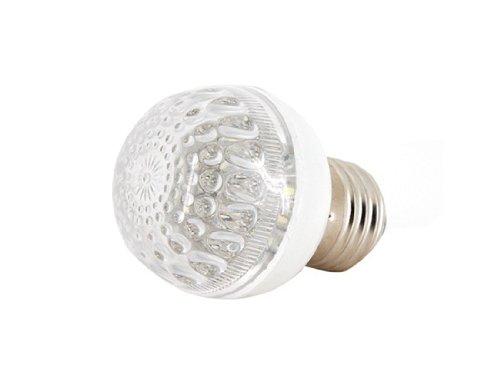 White Light 24 Led Bulb Ac 110V E27 Energy Saving Globe (Silver)