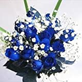 ブルーローズの花束 青いバラ10本&カスミ草、グリーン付き バラの花束【生花】【お祝い・記念日・誕生日・フラワーギフト・バラ】