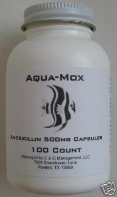 Which fish mox to get survivalist forum for Fish mox amazon