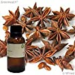 Anise Star 100% Pure Therapeutic Grade Essential Oil - 1/2oz (15ml) (Greenals)
