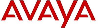 Avaya 700215890 PAGING AMPLIFIER 900-WATT from Avaya