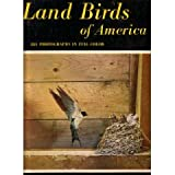 Land Birds of America