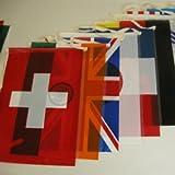 運動会の旗 万国旗ポリエチレン(大)連続紐付全長11.0m20カ国連続