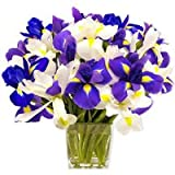 Flowers - Ocean View (Mothers Day Offer: Free Shipping)