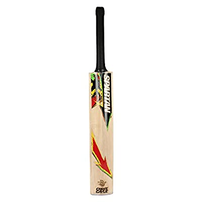 Spartan CG Hammer Kashmir Willow Cricket Bat, Full Size