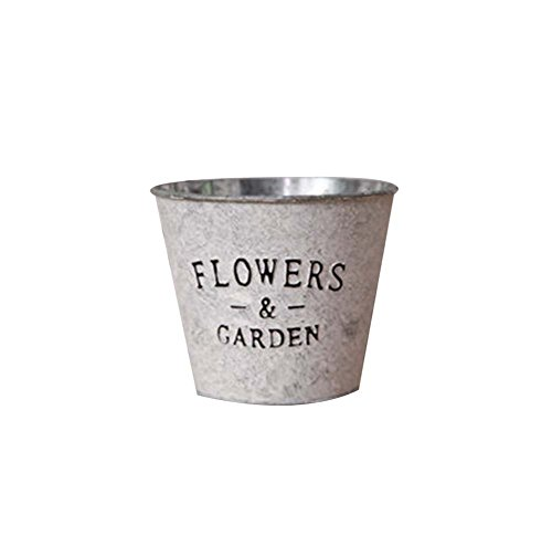 444439vintage-style-de-succulent-plant-fer-pots-decorative-flower-pot