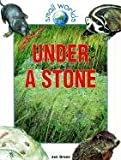 Under a Stone (Small Worlds) (0613195361) by Green, Jen