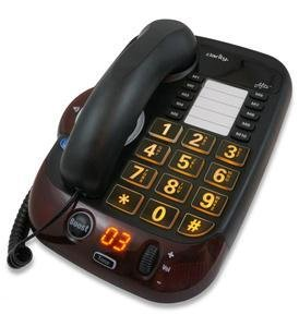 54005.001 Digital- loud- big button spkr