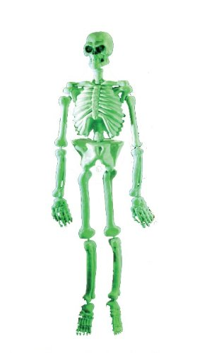 Rubies Costume Halloween Home Décor, Glow-in-the-Dark 5' Laboratory Skeleton