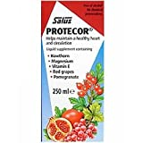 THREE PACKS of Floradix Protecor Liquid Supplement 250ml