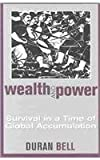 Wealth and Power: Survival in a Time of Global Accumulation