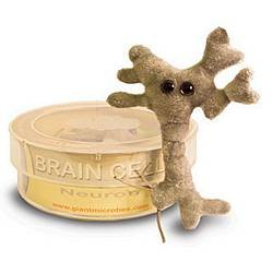 GIANTmicrobes Brain Cell (Neuron) Petri Dish