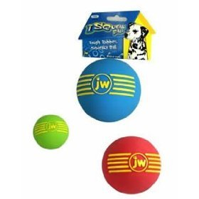JW Pet Company Insight iSqueak Ball 2in Sm. Rubber Dog Toy Assorted Colors