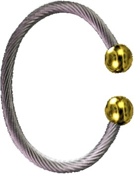 Qi(chi) Ionic/ Biomagnetic Bracelet Two Tone L