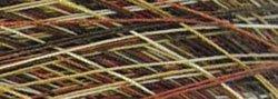 Yli Machine Quilting Thread 2735 Yards Cream To Brown