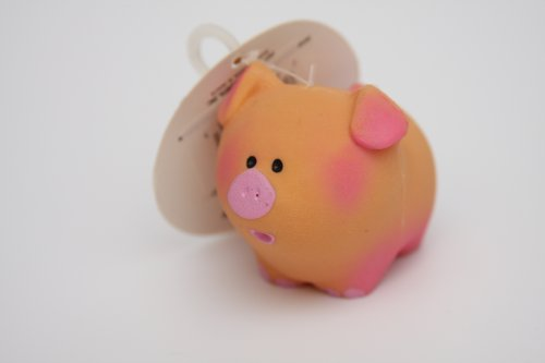 Baby Pig Squeak Dog Toy