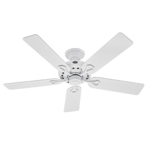 Hunter Savoy 20516 52-Inch 5-Blade Ceiling Fan, White with White/Light Oak Blades