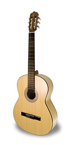 apc-instruments-1f-guitarra-flamenca