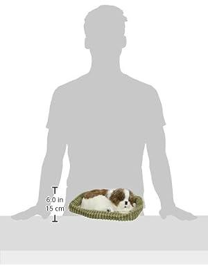 88 Unlimited Sleeping Shih Tzu Plush