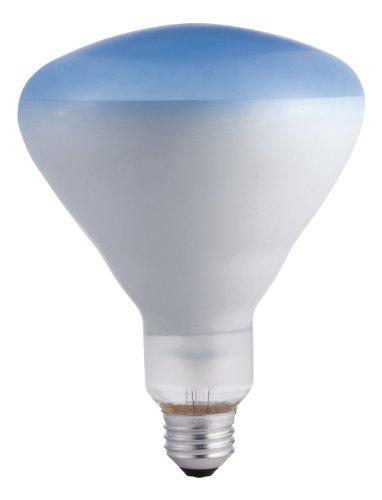 Philips 415307 Agro Plant Light 120-Watt Br40 Food Light Bulb