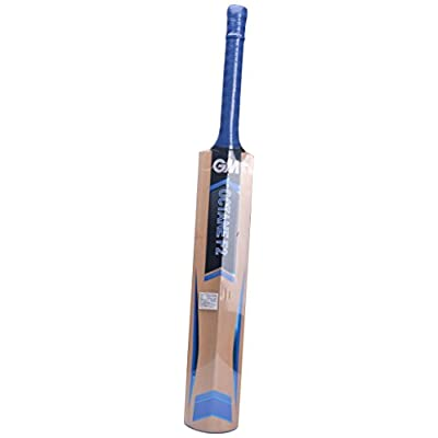 GM Octane F2 Contender Kashmir Willow Cricket Bat, Junior Size 5