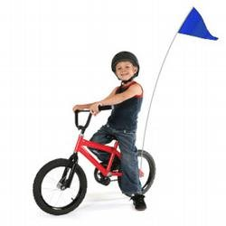 Blue Bicycle Safety Flag Kit (6 Ft. X 1/4 In. Dia.)