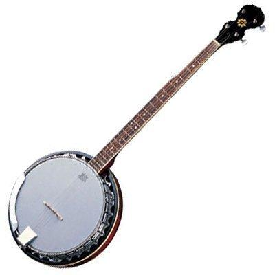 Delta Blue DBJ-35 5 String G Bluegrass Banjo