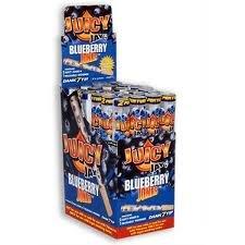 juicy-jays-blueberry-jones-24-pack