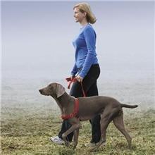 Easy Walk Harness, Medium/Large, Black