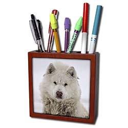 Kike Calvo Animals - Canadian Eskimo Dog Hudson Bay Churchill Northern Canada - Tile Pen Holders-5 inch tile pen holder